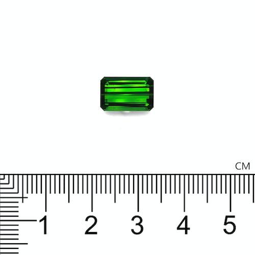 TG0872 2.jpg?auto=format&ixlib=php 3.3 - 12.85ct Vivid Green Tourmaline stone