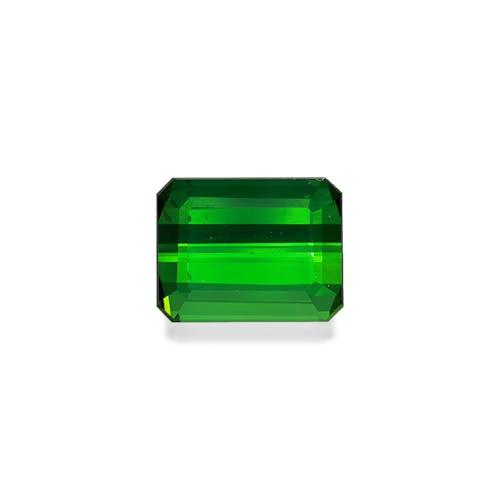 TG0876.jpg?auto=format&ixlib=php 3.3 - 14.74ct Vivid Green Tourmaline stone