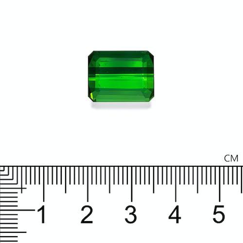 TG0876 2.jpg?auto=format&ixlib=php 3.3 - 14.74ct Vivid Green Tourmaline stone