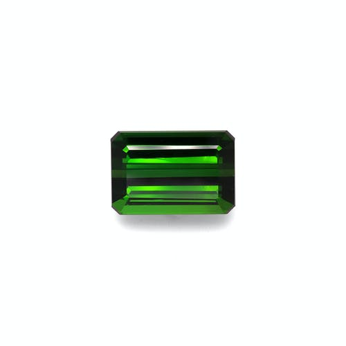 TG0878.jpg?auto=format&ixlib=php 3.3 - 26.60ct Moss Green Tourmaline stone