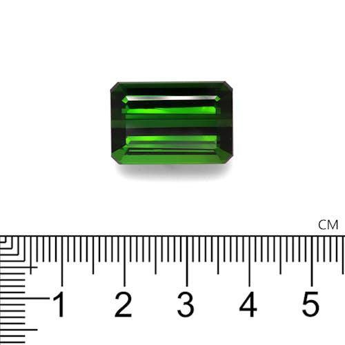 TG0878 2.jpg?auto=format&ixlib=php 3.3 - 26.60ct Moss Green Tourmaline stone