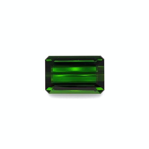 TG0879.jpg?auto=format&ixlib=php 3.3 - 30.39ct Moss Green Tourmaline stone