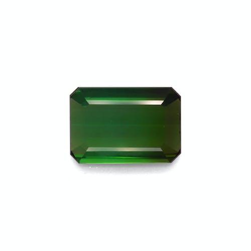 TG0884.jpg?auto=format&ixlib=php 3.3 - 10.66ct Moss Green Tourmaline stone