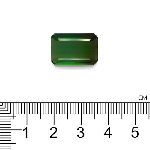 TG0884 2.jpg?auto=format&ixlib=php 3.3 - 10.66ct Moss Green Tourmaline stone