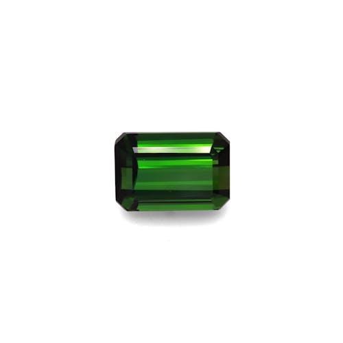 TG0888.jpg?auto=format&ixlib=php 3.3 - 14.31ct Moss Green Tourmaline stone