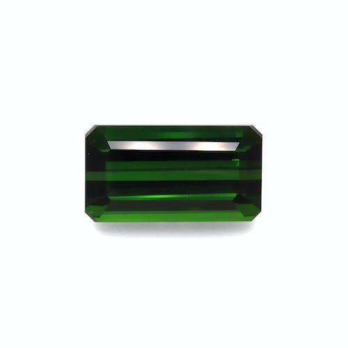 TG0889.jpg?auto=format&ixlib=php 3.3 - 32.37ct Moss Green Tourmaline stone