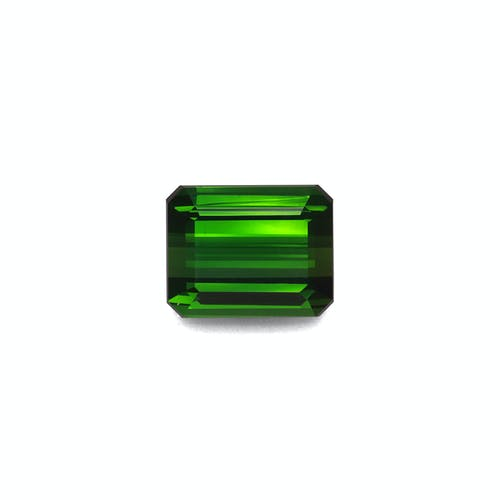 TG0891.jpg?auto=format&ixlib=php 3.3 - 11.64ct Moss Green Tourmaline stone