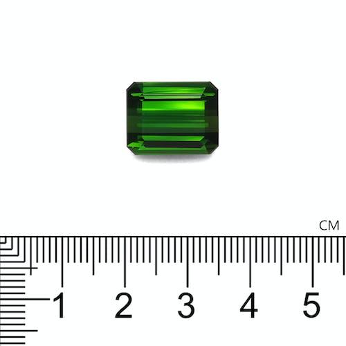 TG0891 2.jpg?auto=format&ixlib=php 3.3 - 11.64ct Moss Green Tourmaline stone