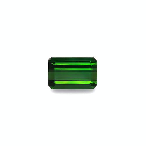 TG0894.jpg?auto=format&ixlib=php 3.3 - 22.95ct Moss Green Tourmaline stone