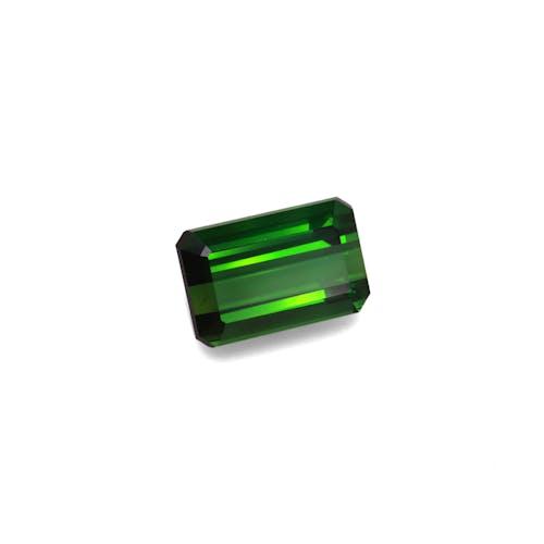 TG0894 1.jpg?auto=format&ixlib=php 3.3 - 22.95ct Moss Green Tourmaline stone