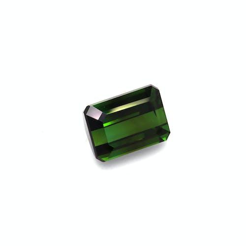 TG0895 1.jpg?auto=format&ixlib=php 3.3 - 18.94ct Moss Green Tourmaline stone