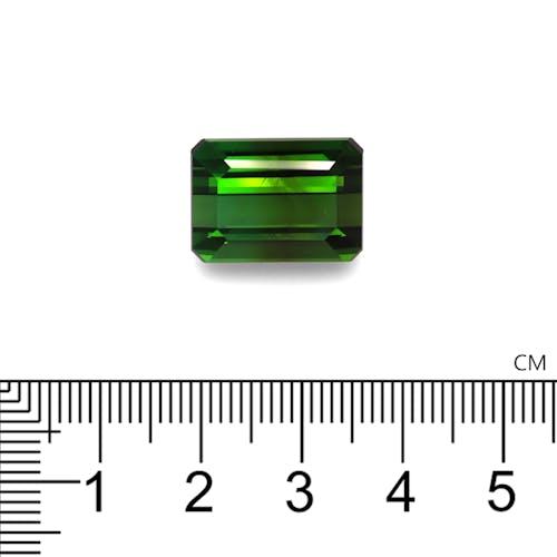 TG0895 2.jpg?auto=format&ixlib=php 3.3 - 18.94ct Moss Green Tourmaline stone