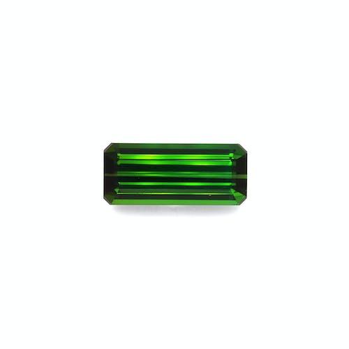 TG0896.jpg?auto=format&ixlib=php 3.3 - 16.66ct Moss Green Tourmaline stone