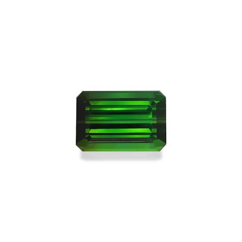 TG0897.jpg?auto=format&ixlib=php 3.3 - 19.59ct Moss Green Tourmaline stone