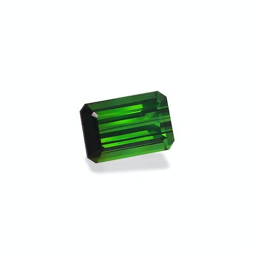 TG0897 1.jpg?auto=format&ixlib=php 3.3 - 19.59ct Moss Green Tourmaline stone