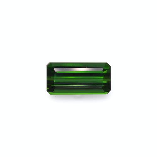 TG0898 : 8.72ct Moss Green Tourmaline