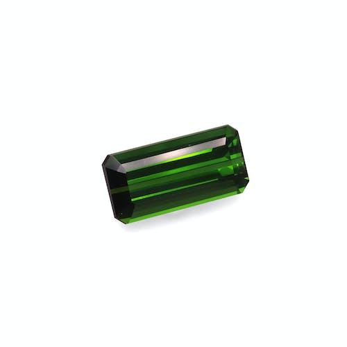 TG0898 1.jpg?auto=format&ixlib=php 3.3 - 8.72ct Moss Green Tourmaline stone