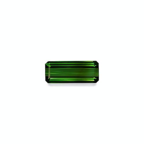 TG0899.jpg?auto=format&ixlib=php 3.3 - 10.91ct Moss Green Tourmaline stone