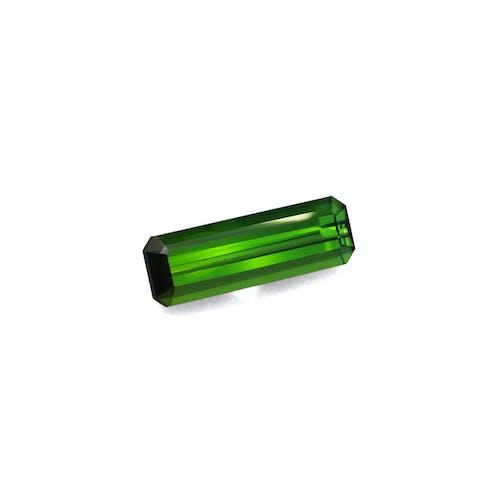 TG0901 1.jpg?auto=format&ixlib=php 3.3 - 6.18ct Moss Green Tourmaline stone