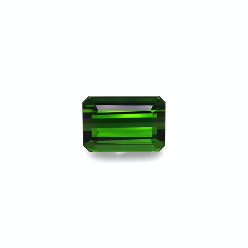 TG0902.jpg?auto=format&ixlib=php 3.3 - 11.50ct Moss Green Tourmaline stone