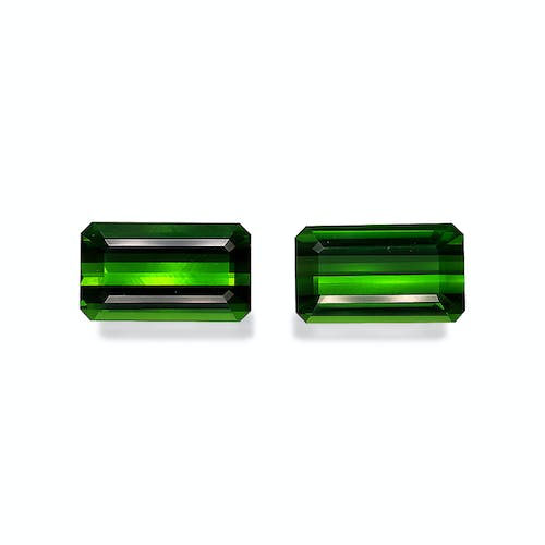 TG0903 : 27.20ct Moss Green Tourmaline – Pair