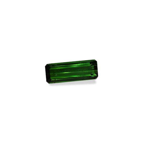 TG0906 1.jpg?auto=format&ixlib=php 3.3 - 18.92ct Moss Green Tourmaline stone