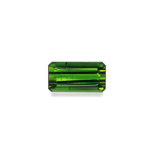 TG0914.jpg?auto=format&ixlib=php 3.3 - 4.74ct Moss Green Tourmaline stone