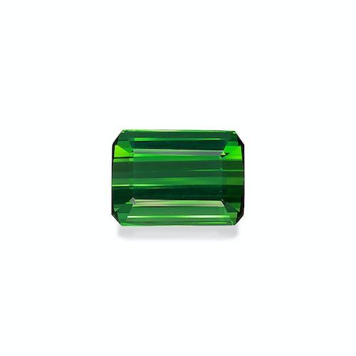 TG0928.jpg?auto=format&ixlib=php 3.3 - 13.09ct Vivid Green Tourmaline stone