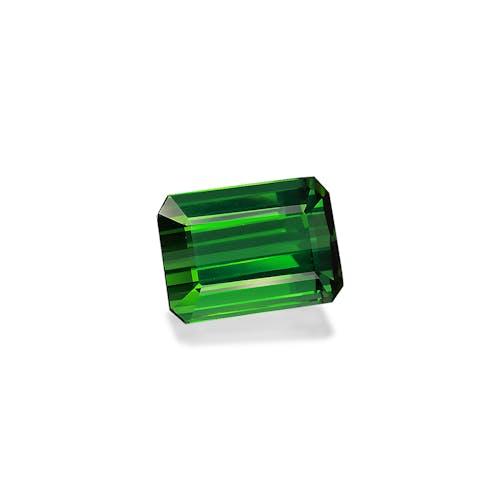 TG0928 1.jpg?auto=format&ixlib=php 3.3 - 13.09ct Vivid Green Tourmaline stone