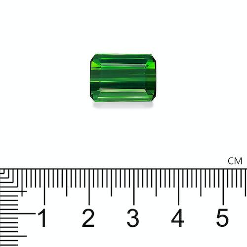 TG0928 2.jpg?auto=format&ixlib=php 3.3 - 13.09ct Vivid Green Tourmaline stone