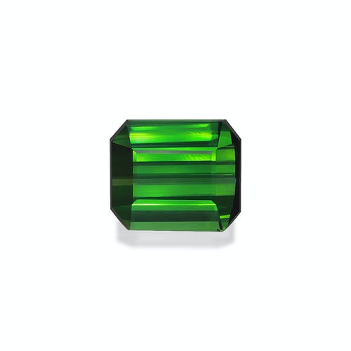 TG0930.jpg?auto=format&ixlib=php 3.3 - 20.51ct Vivid Green Tourmaline stone 16x14mm