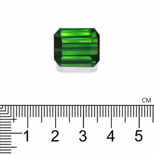 TG0930 2.jpg?auto=format&ixlib=php 3.3 - 20.51ct Vivid Green Tourmaline stone 16x14mm