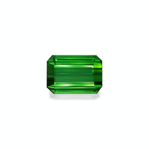 TG0931.jpg?auto=format&ixlib=php 3.3 - 22.59ct Vivid Green Tourmaline stone