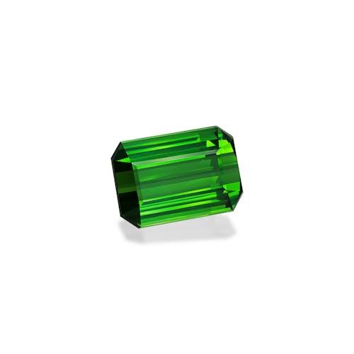 TG0931 1.jpg?auto=format&ixlib=php 3.3 - 22.59ct Vivid Green Tourmaline stone
