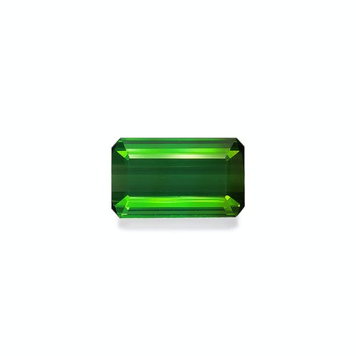 TG0937.jpg?auto=format&ixlib=php 3.3 - 11.33ct Vivid Green Tourmaline stone