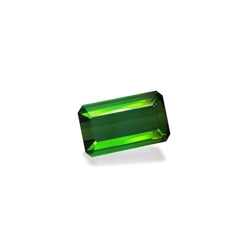 TG0937 1.jpg?auto=format&ixlib=php 3.3 - 11.33ct Vivid Green Tourmaline stone
