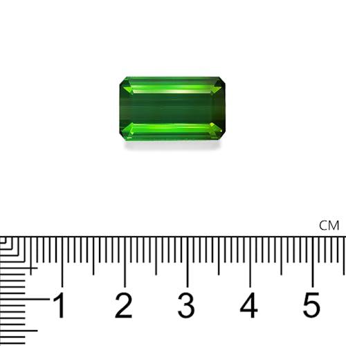 TG0937 2.jpg?auto=format&ixlib=php 3.3 - 11.33ct Vivid Green Tourmaline stone