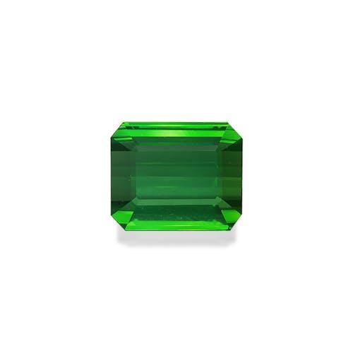 TG0938.jpg?auto=format&ixlib=php 3.3 - 21.60ct Vivid Green Tourmaline stone