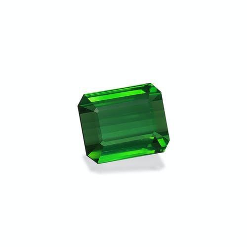 TG0938 1.jpg?auto=format&ixlib=php 3.3 - 21.60ct Vivid Green Tourmaline stone