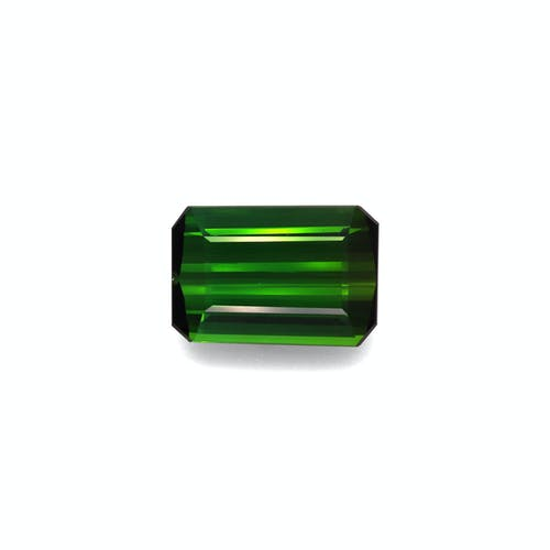 TG0940.jpg?auto=format&ixlib=php 3.3 - 16.04ct Moss Green Tourmaline stone