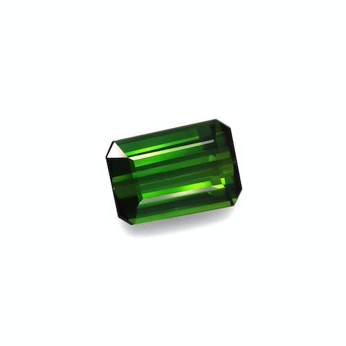 TG0940 1.jpg?auto=format&ixlib=php 3.3 - 16.04ct Moss Green Tourmaline stone