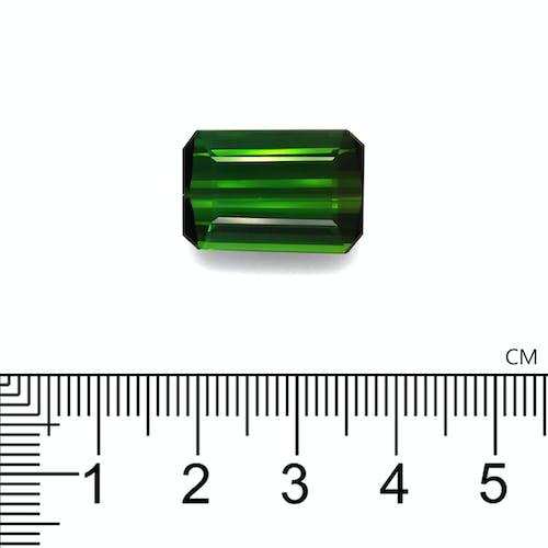 TG0940 2.jpg?auto=format&ixlib=php 3.3 - 16.04ct Moss Green Tourmaline stone