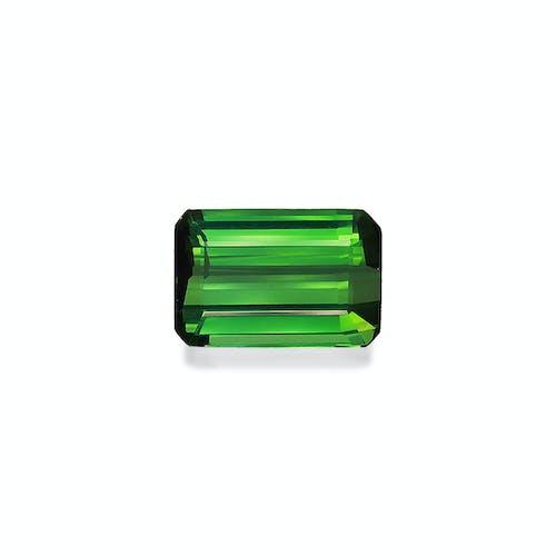 TG0944.jpg?auto=format&ixlib=php 3.3 - 8.82ct Vivid Green Tourmaline stone