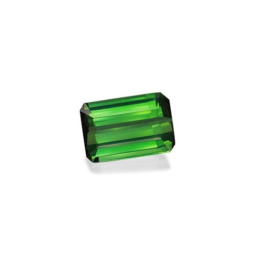 TG0944 1.jpg?auto=format&ixlib=php 3.3 - 8.82ct Vivid Green Tourmaline stone
