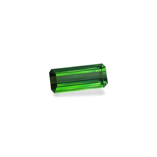 TG0946 1.jpg?auto=format&ixlib=php 3.3 - 11.80ct Vivid Green Tourmaline stone