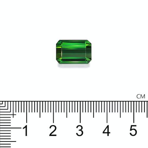 TG0950 : 8.63ct Vivid Green Tourmaline
