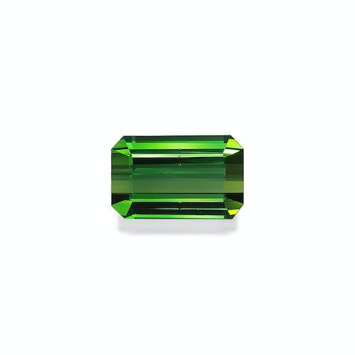 TG0954.jpg?auto=format&ixlib=php 3.3 - 8.41ct Vivid Green Tourmaline stone