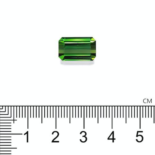 TG0954 2.jpg?auto=format&ixlib=php 3.3 - 8.41ct Vivid Green Tourmaline stone