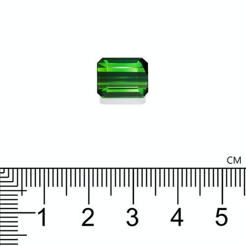 TG0980 2.jpg?auto=format&ixlib=php 3.3 - 7.04ct Vivid Green Tourmaline stone 11x9mm