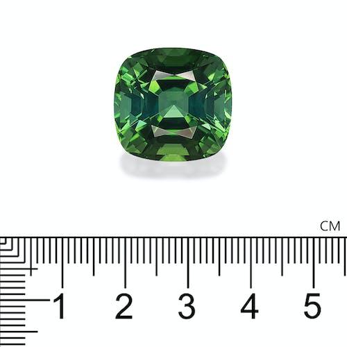 TG1018 2.jpg?auto=format&ixlib=php 3.3 - 32.51ct Green Tourmaline stone